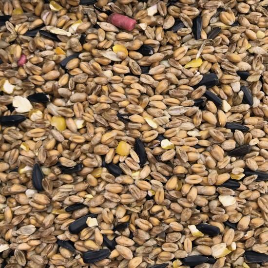 Wild Bird Seed 20kg | 394120