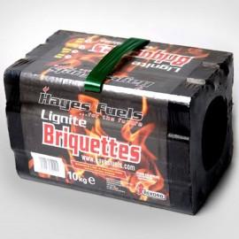 Lignite Briquettes | 61438