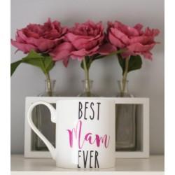 Best Mam Ever Mug | 428508