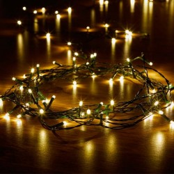 SMART GARDEN 100 Warm White LED String Lights | 401343