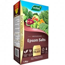 WESTLAND Epsom Salts 1.5KG   402952